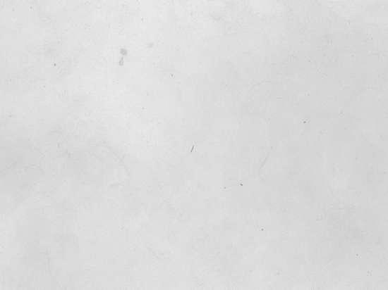 white_texture