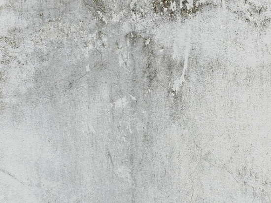 mortar wall_white_texture