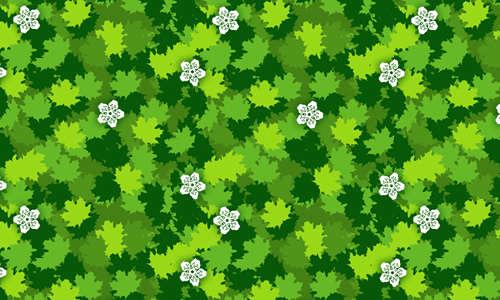 acer_leaf_template