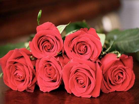 beautiful_red_roses