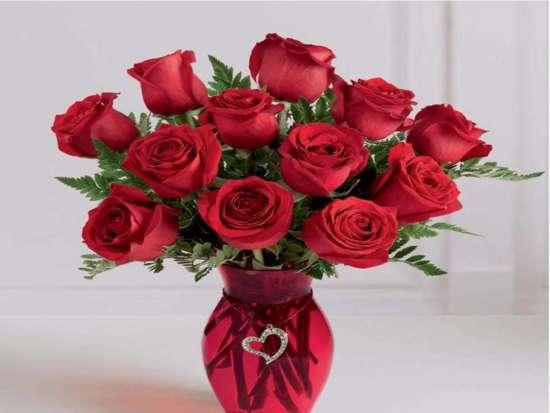 red_roses_in_vase