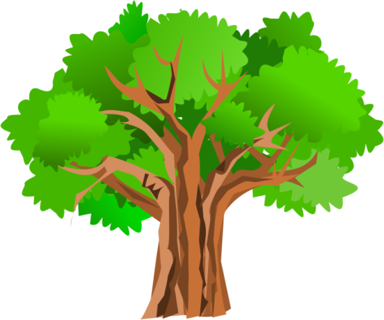 gurica_tree