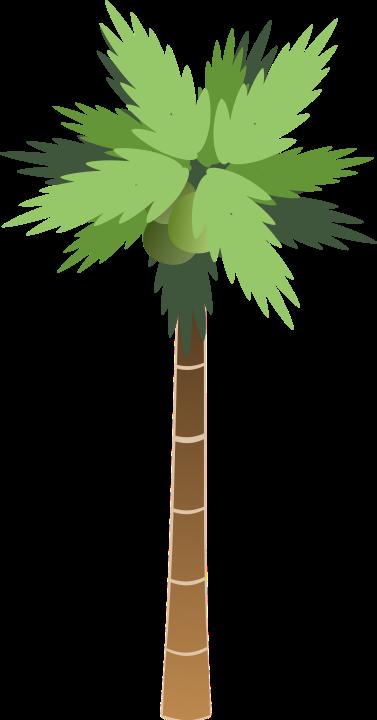 bsantos_palm_tree