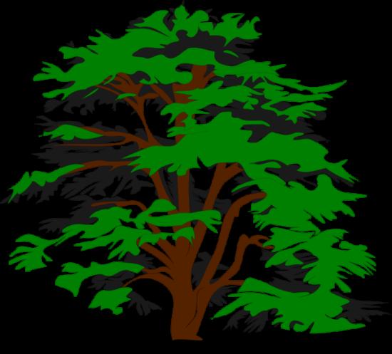 bobocal_simple_vector_tree