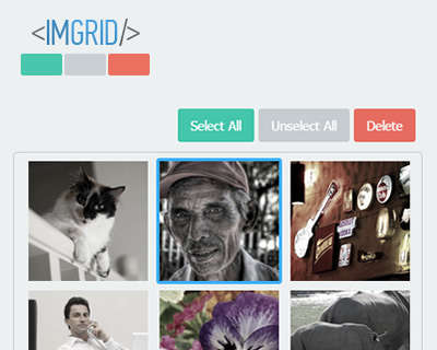 imgrid_jquery_image_selection_plugin