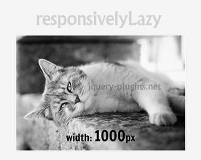 responsivelylazy_lazy_load_responsive_images
