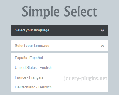 simple_select_custom_select_with_css_and_jquery