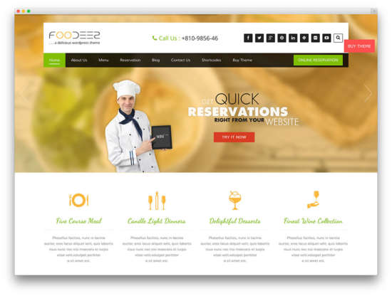 foodeez_lite_wordpress_parallax_theme