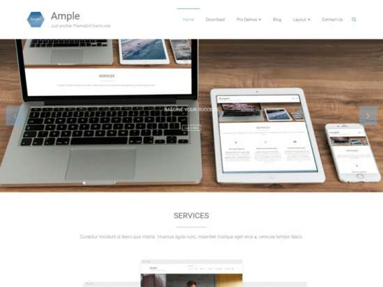 ample_parallax_wordpress_theme