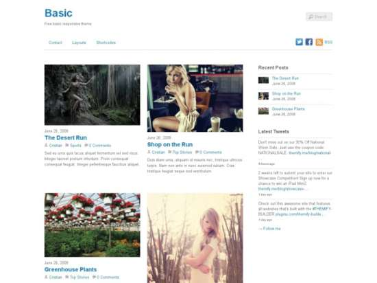 basic_parallax_wordpress_theme