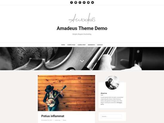 amadeus_parallax_wordpress_theme