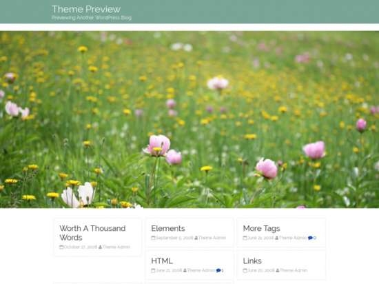 birdfield_parallax_wordpress_theme