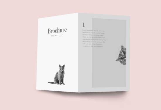 bifold_brochure_mockup