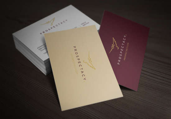 prospectacy_corporate_and_brand_identity
