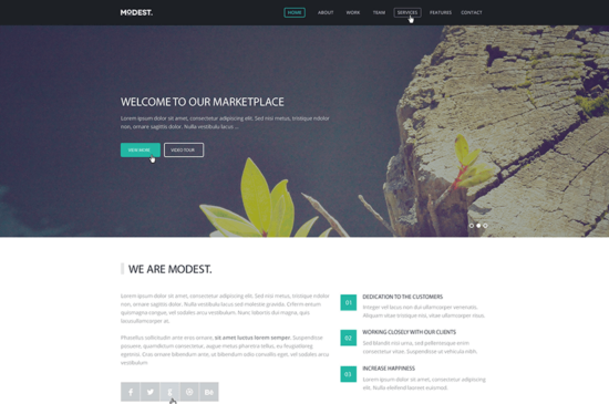 modest_landing_page_website_template_psd