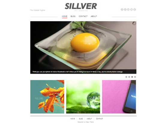 sillver_website_template_psd