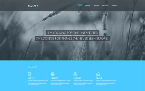 blueasy_website_template_psd