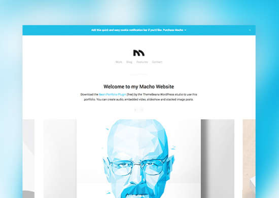 macho_website_template_psd
