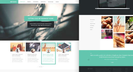 infusion_business_website_template_psd