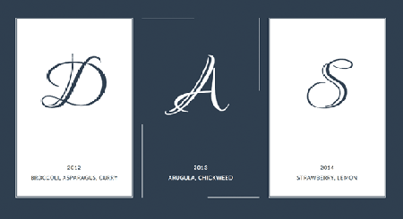 creating_a_border_animation_effect_with_svg_and_css3
