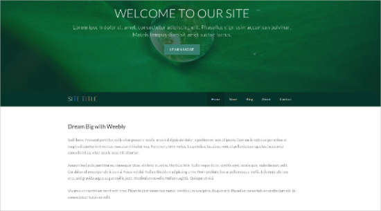 free_responsive_professional_weebly_template