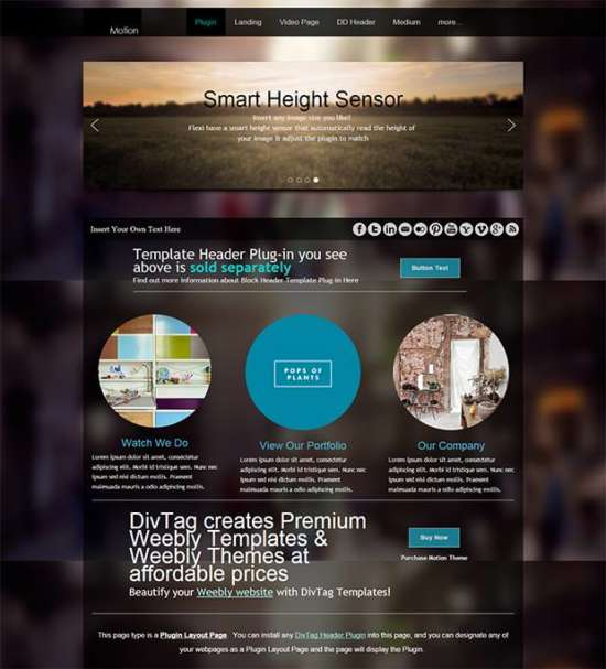 motion_theme_weebly_theme