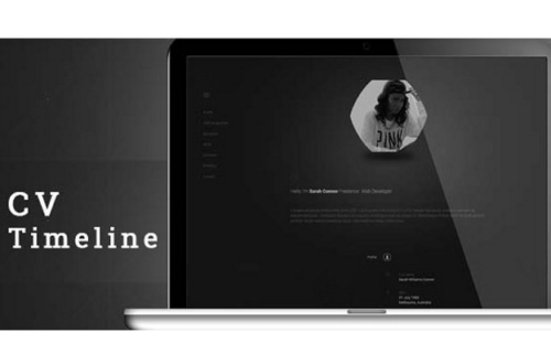 CV Timeline WordPress theme
