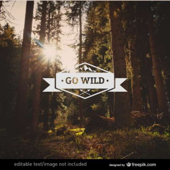 go_wild_label_vector