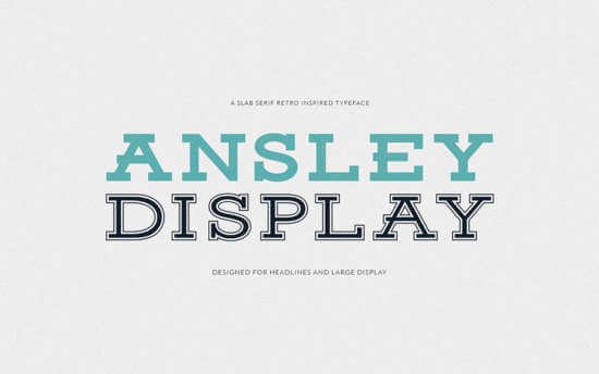 ansley_display