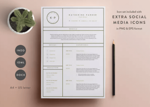3 Page Resume Template  (INDD / DOCX)