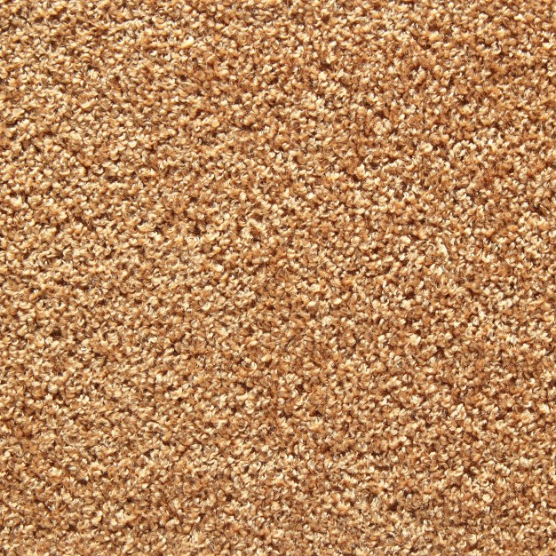 brown_carpet_texture