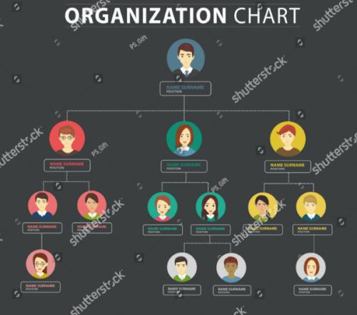organization_chart_infographics