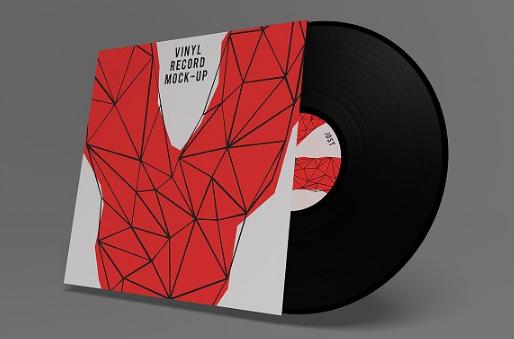 20 Photorealistic Vinyl Mockups Psd Ginva