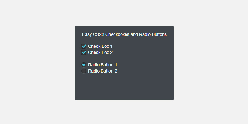 dark_checkboxes_and_radio_buttons_in_css