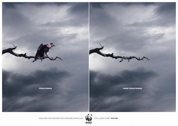 WWF - Creative Print Advertisements
