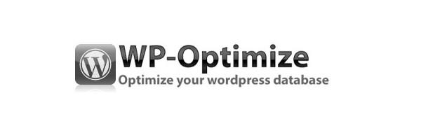 8 Best WordPress Plugins to Speed Up Your Website Ginva