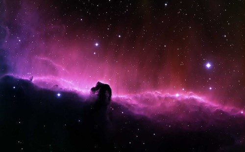 stars nebulae Horsehead 2560x1600